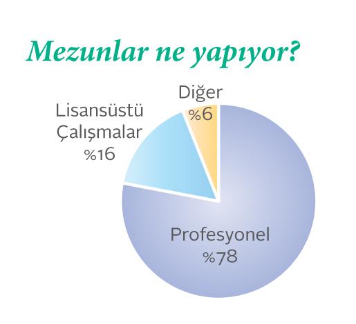 Sabancı Bilgisayar Mühendisliği mezunlarının ne işler yaptığını gösteren pasta grafik