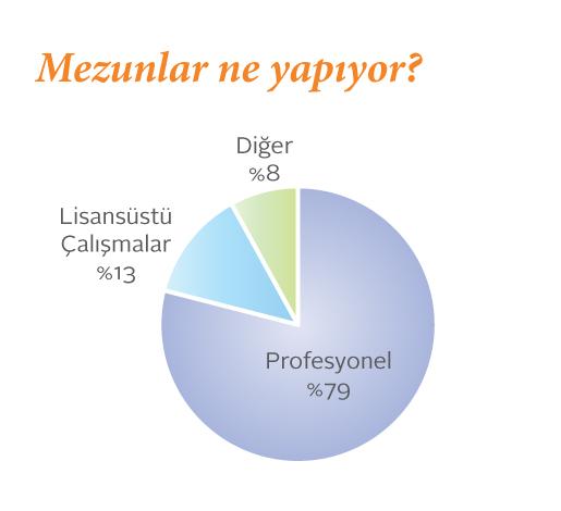 Sabancı ekonomi bölümü mezunlarının ne işler yaptığını gösteren pasta grafik.