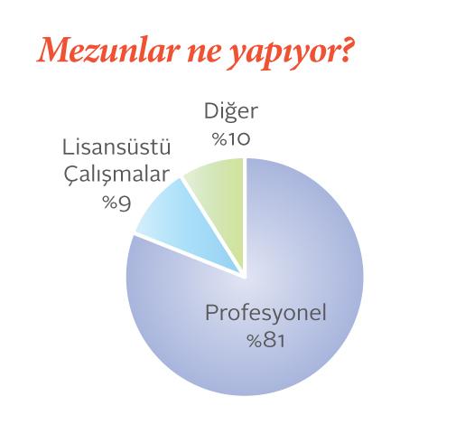 abancı üniversitesi görsel iletişim tasarımı mezunlarının neler yaptıklarını gösteren pasta grafik.