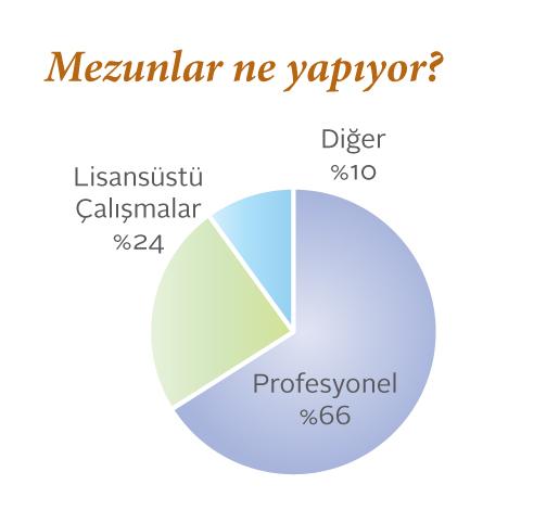 Kültürel Çalışmalar mezunlarının ne işler yaptıklarını gösteren pasta grafik.