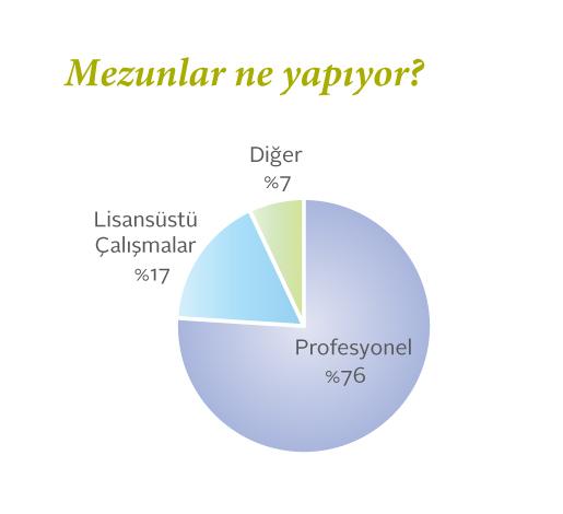 sabancı üniversitesi mekatronik mezunlarının neler yaptıklarını gösteren pasta grafik.