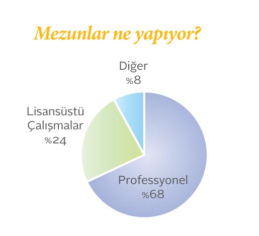 Sabancı Siyaset Bilimi mezunlarının ne işler yaptığını gösteren pasta grafik