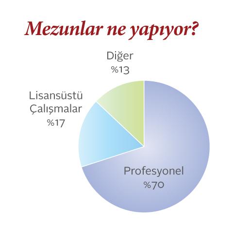 Sabancı Uluslararası Çalışmalar mezunlarının ne işler yaptığını gösteren pasta grafik
