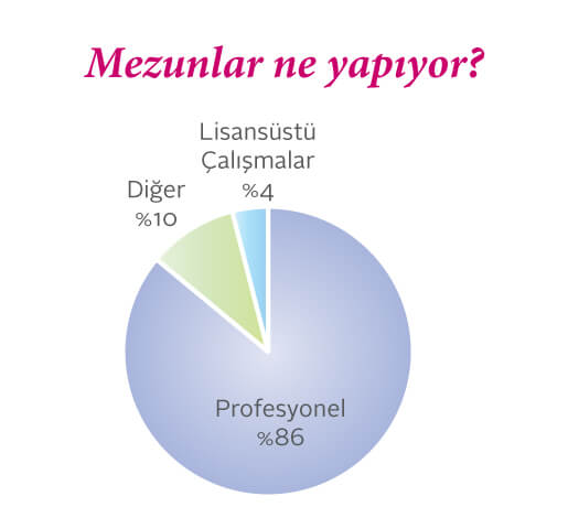 Sabancı Yönetim Bilimlerimezunlarının ne işler yaptığını gösteren pasta grafik